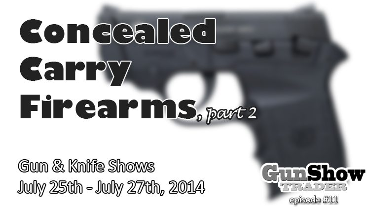 380 Concealed Carry Firearms