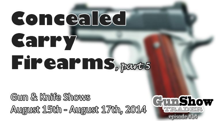 Concealed Carry Semi-Automatic Firearms
